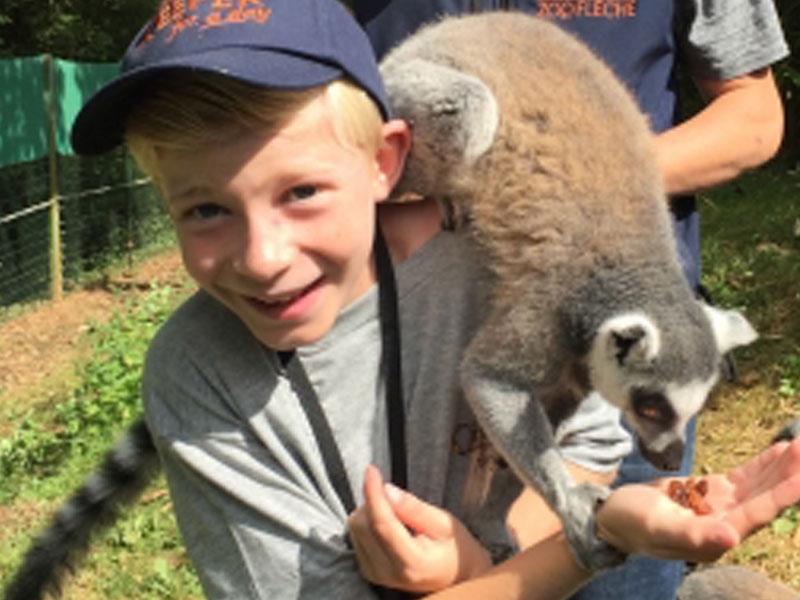 Enfant avec les animaux du zoo de la flèche