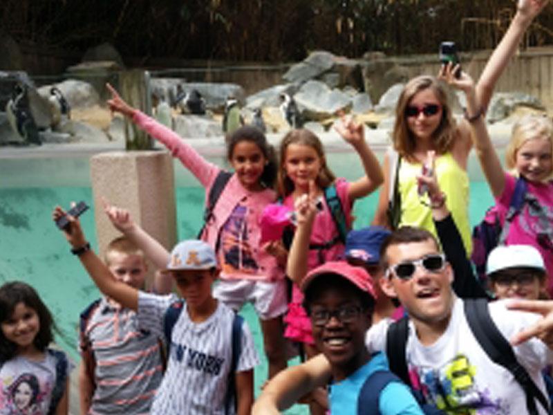 Groupe d'enfants en colonie de vacances au zoo