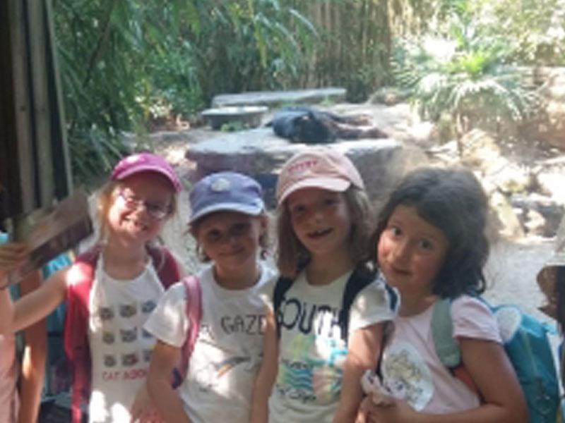 Enfants en colonie de vacances au zoo de la flèche