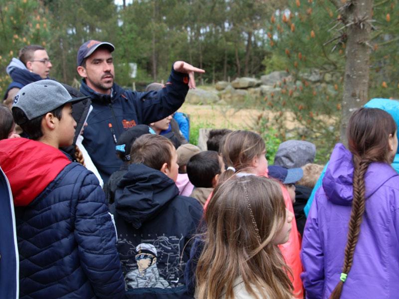 Groupe d'enfants en colonie de vacances au printemps au zoo de la flèche