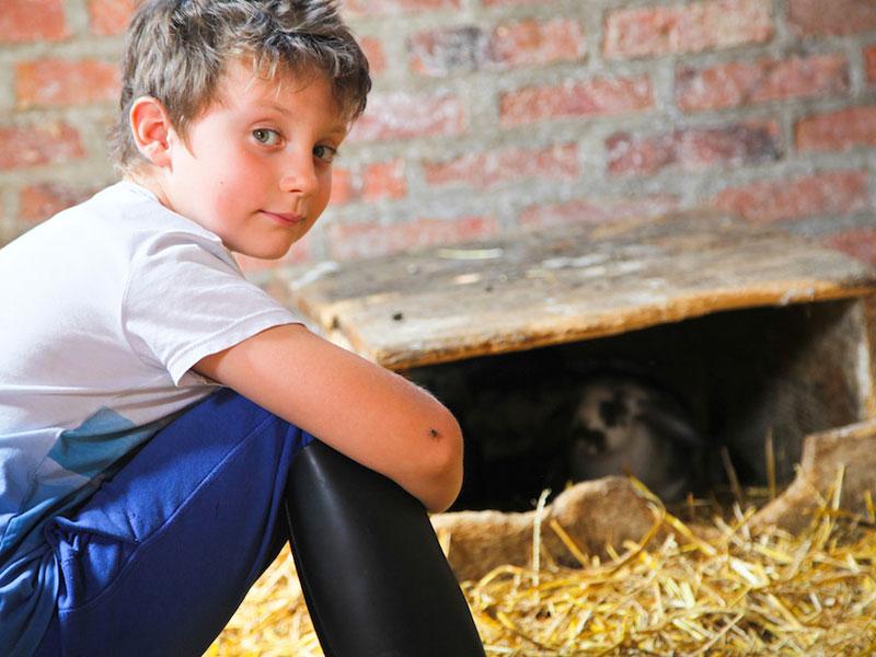 jeune garçon en colo à la campagne à la ferme ce printemps