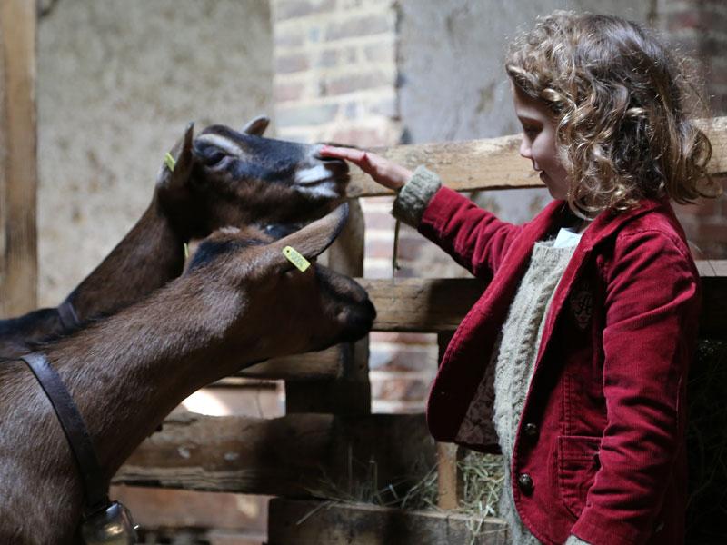 enfant caressant les animaux de la ferme en colonie