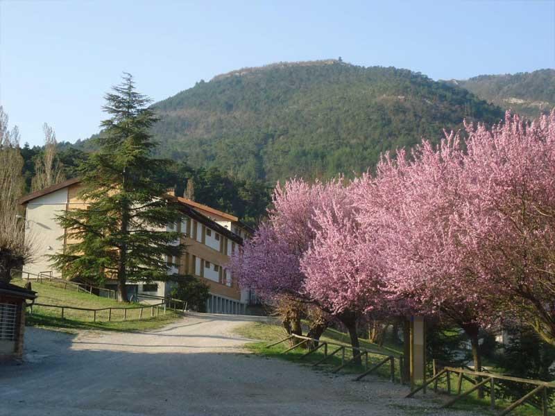Vue de l'entrée du centre de vacances au printemps