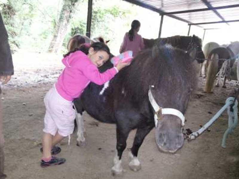 Une enfant faisant un câlin à son cheval durant une colonie de vacances