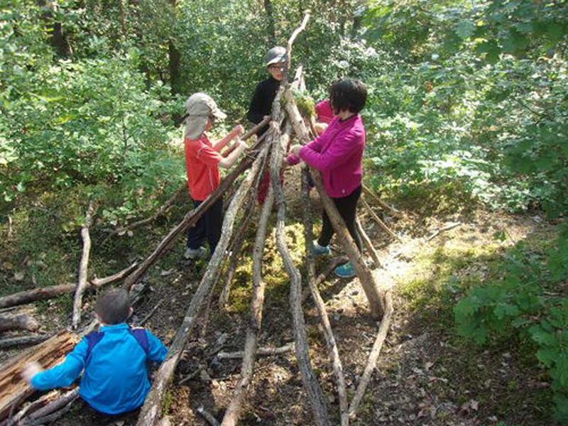 Groupe d'enfants construisant une cabane dans les bois en colonie de vacances