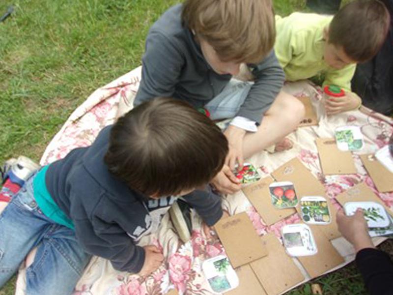 Enfants découvrant les différents fruits et légumes en colonie de vacances à la campagne
