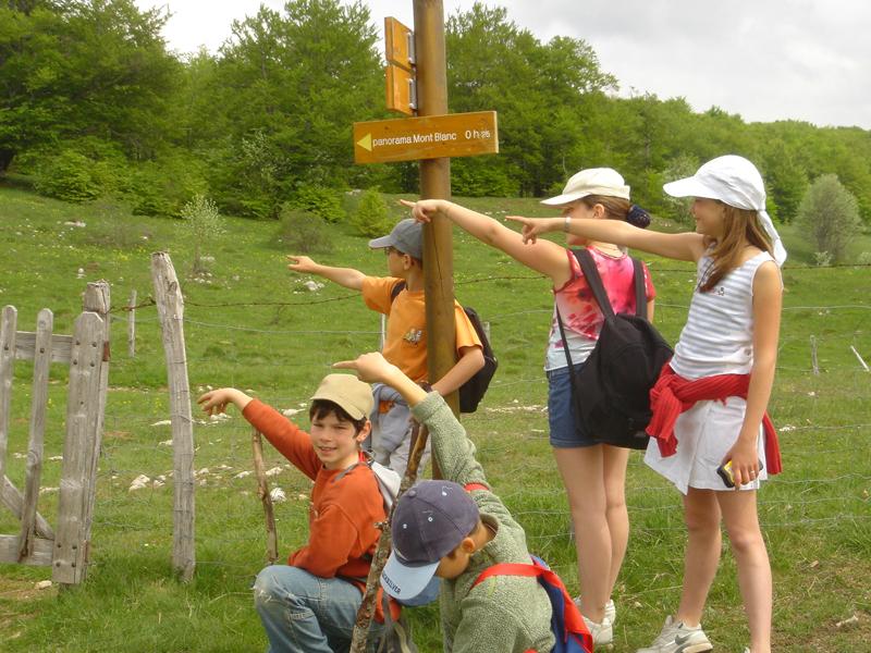 Enfants en course d'orientation en colonie de vacances à la campagne