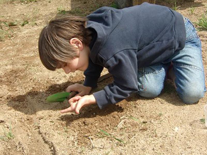 Enfant observant la faune et la flore