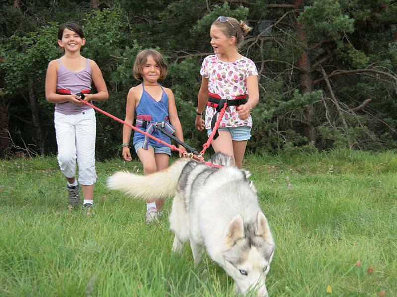 Fillettes accompagnées de leur chien en canirando