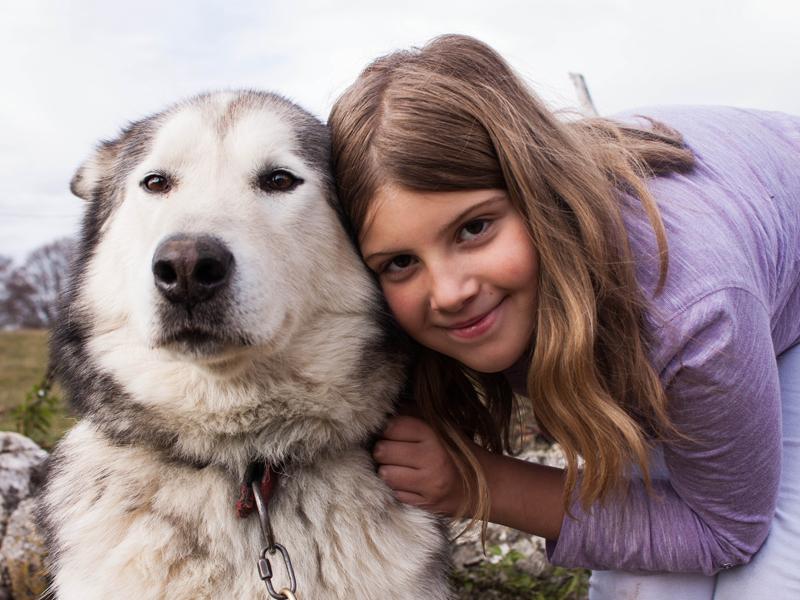 Portrait d'une enfant et son chien en canirando