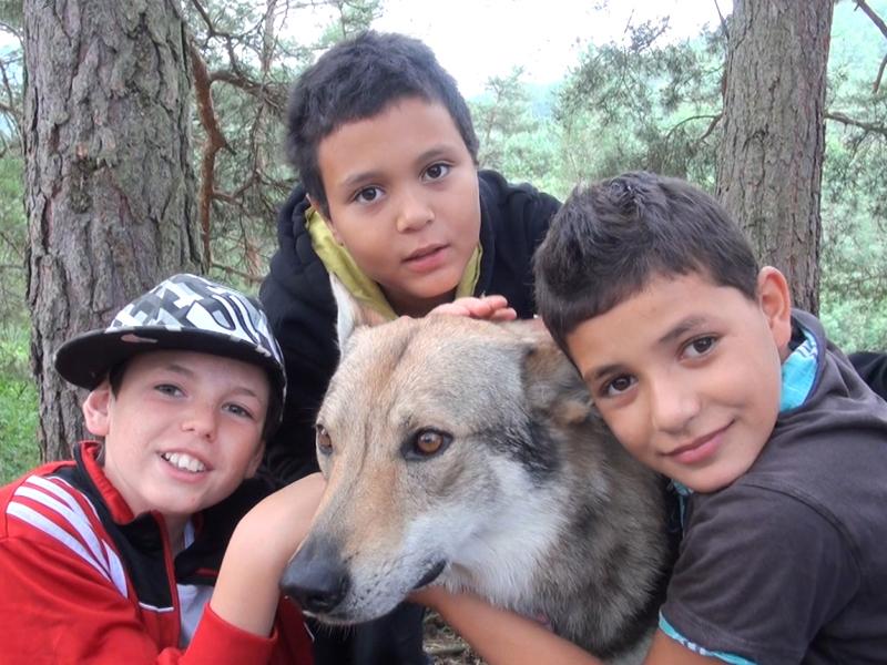 Portrait d'enfants autour d'un chien en canirando