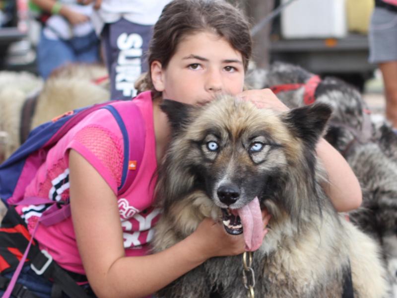 Portrait d'une jeune fille avec un chien en canirando