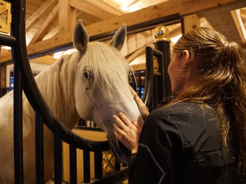 Adote et son cheval