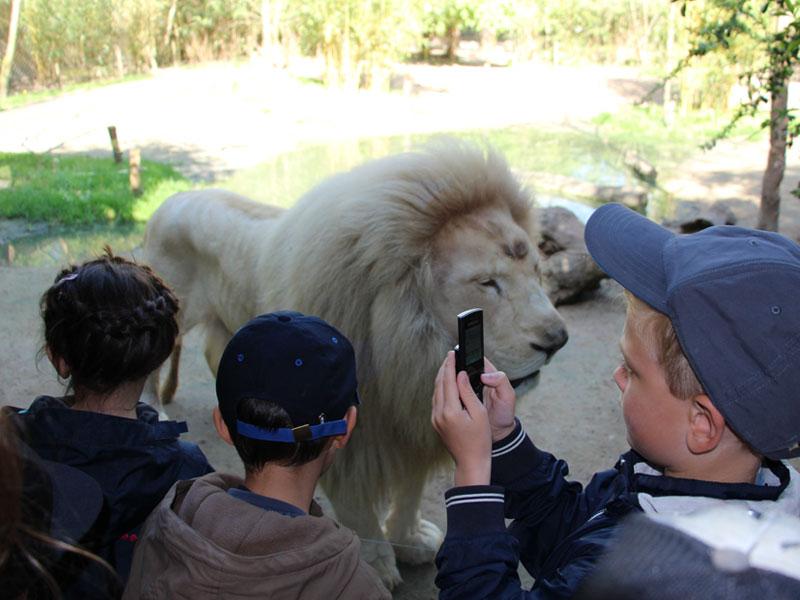 Enfants découvrant les animaux de la savane au zoo