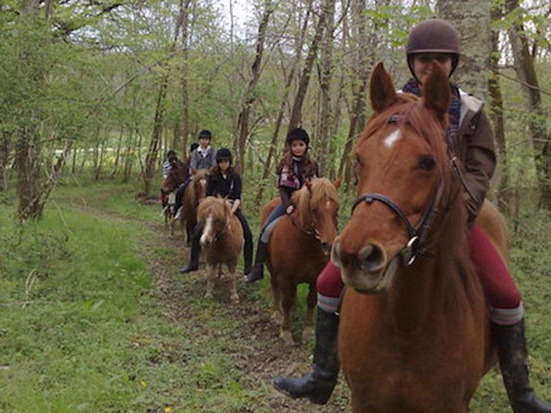 Groupe d'enfants à cheval en colonie de vacances