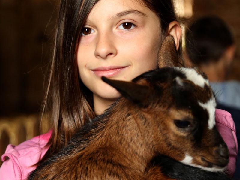 Jeune enfant s'occupant d'animaux en colo