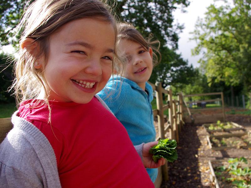 Apprendre à cultiver les légumes en colo