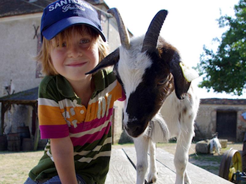 Enfant avec un animal de la ferme en colo à la toussaint