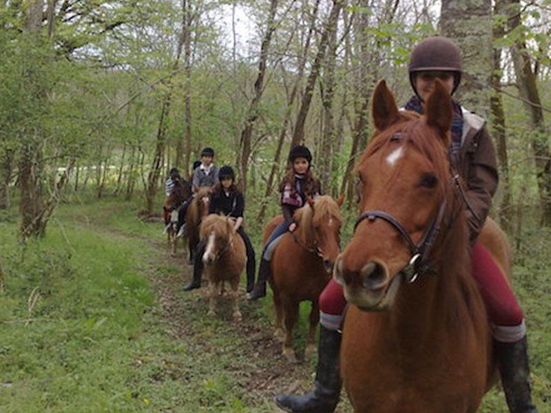Groupe d'enfants pratiquant l'équitation en colo