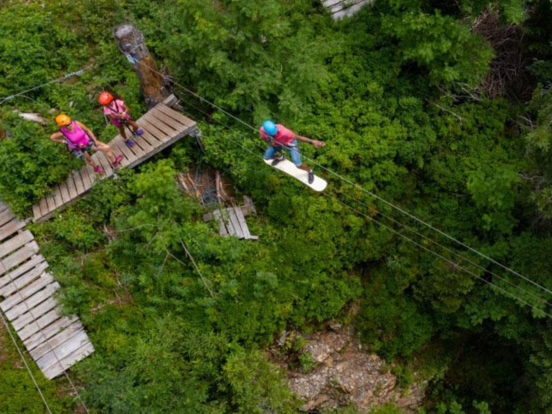groupe d'enfants faisant de l'accrobranche à la montage en colonie de vacances à la montagne