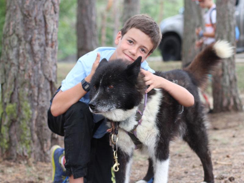 Portrait d'un enfant avec un chien en colonie de vacances à la montagne
