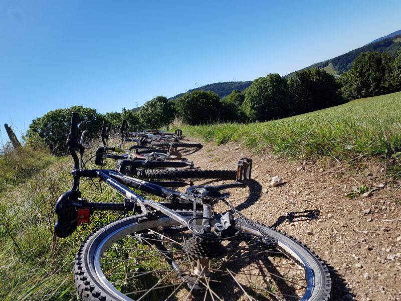 vélos posés sur le chemin de campagne en colonie de vacances d'automne