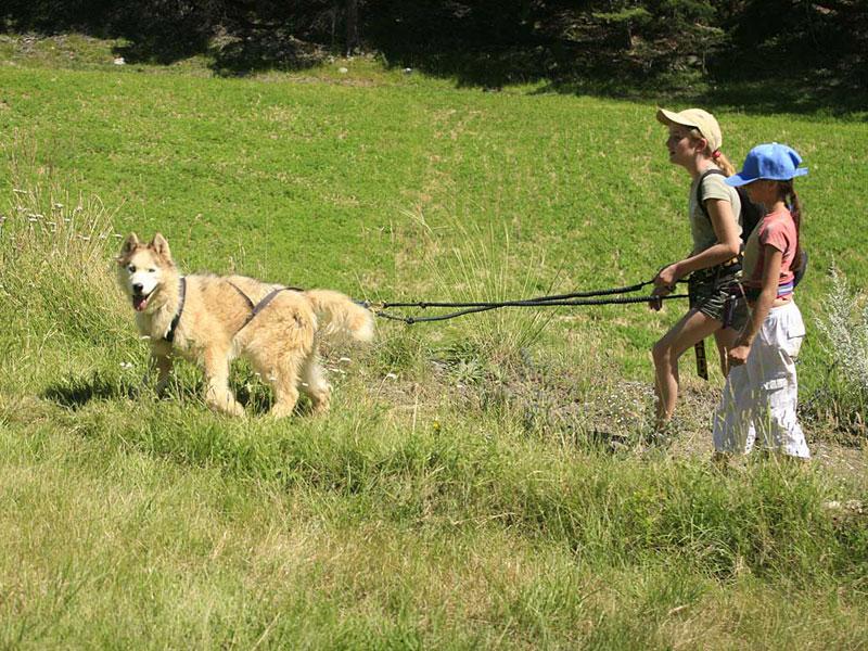 deux enfants en balade en canirando en colonie de vacances à la montagne