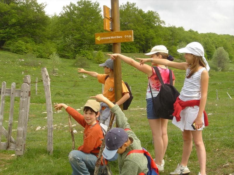 groupe d'enfants en course d'orientation en colonie de vacances cet automne