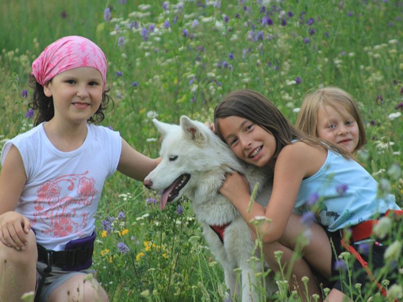 trois fillettes en colonie de vacances en compagnie d'un chien durant une séance de canirando