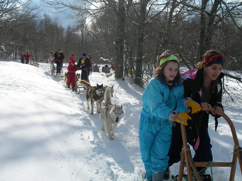 enfants en balade à traineaux à chiens en colonie de vacances