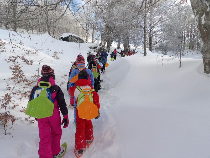 groupe d'enfants faisant de la luge en colonie de vacances neige
