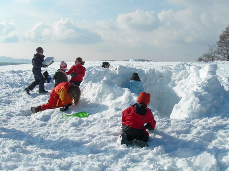 groupe d'enfants apprenant à faire un igloo en colonie de vacances neige