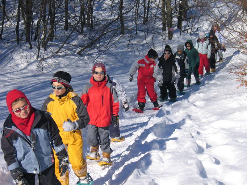 groupe d'enfants en randonnée à raquettes en colonie de vacances