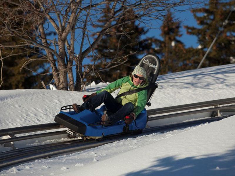 adolescent faisant de la luge sur rails en colonie de vacances