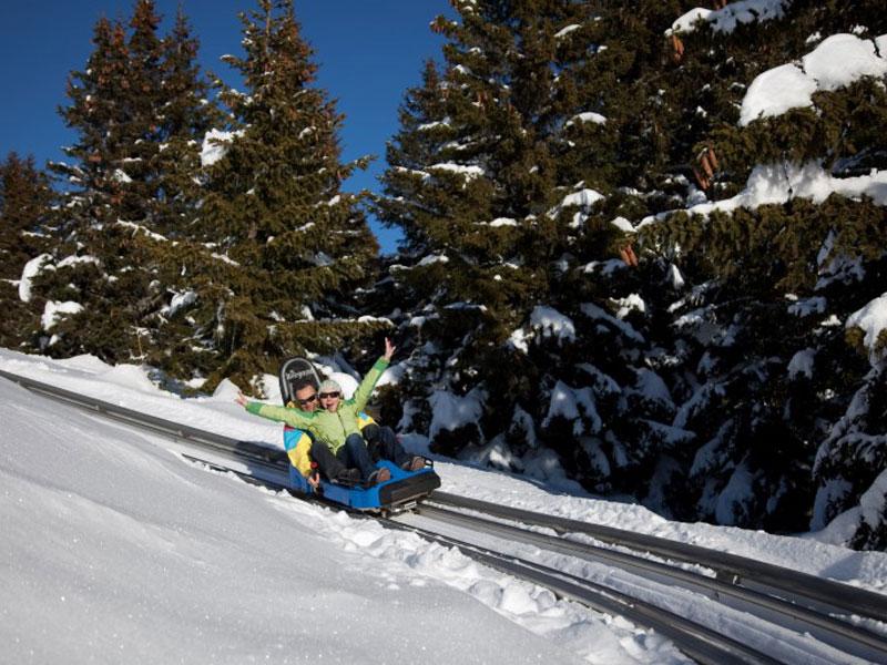 ado faisant de la luge sur rails en colonie de vacances à la montagne