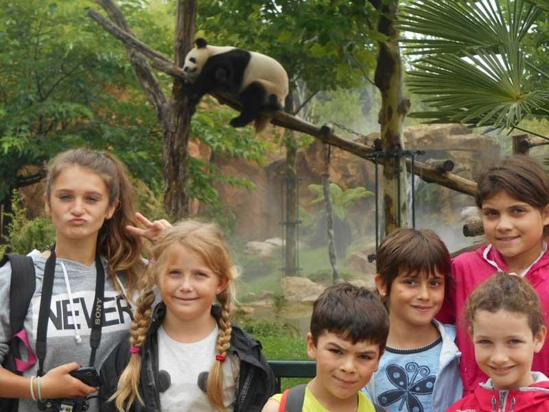 Groupe d'enfants au zoo parc de beauval en colonie de vacances à la toussaint