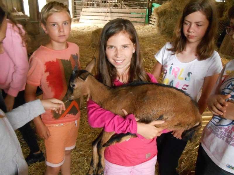 groupe de jeunes filles avec les animaux de la ferme en colonie de vacances à la ferme
