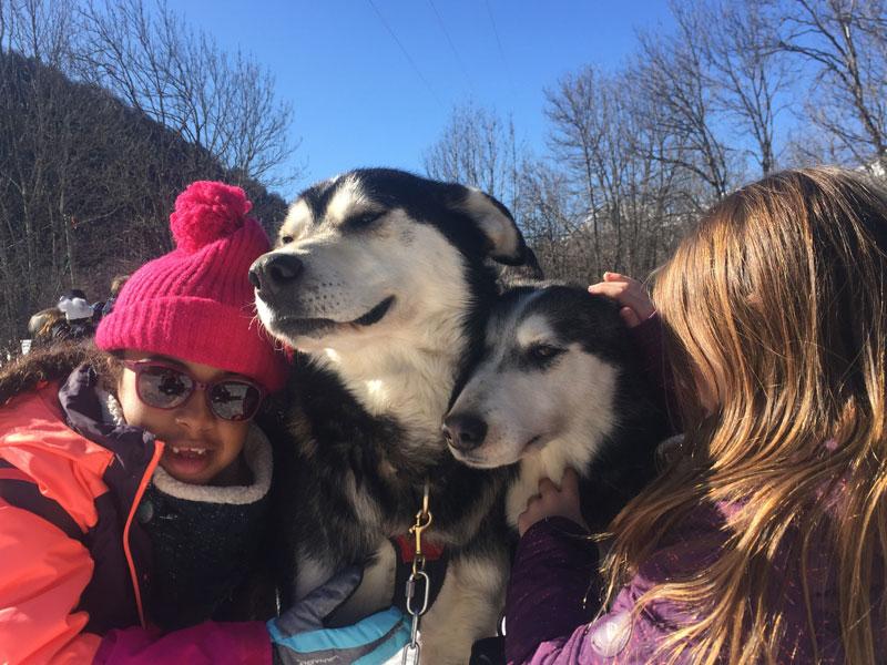 portrait de fillettes et des chiens de traineaux en colonie de vacances cet hiver