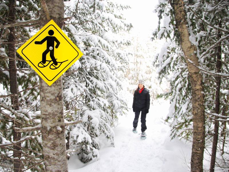 adolescent en randonnée à raquettes dans la forêt cet hiver en colo