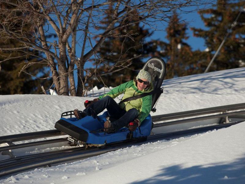 adolescent de 14 ans faisant de la luge cet hiver en savoie en colonie de vacances