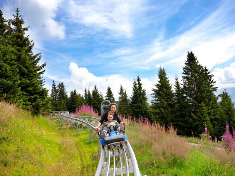 Enfants faisant de la luge d'été sur rails en colonie