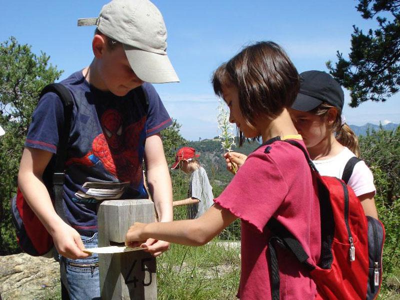 enfants en course d'orientation en colonie de vacances