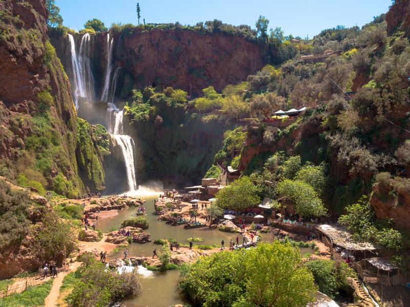Oasis en colonie de vacnaces au maroc