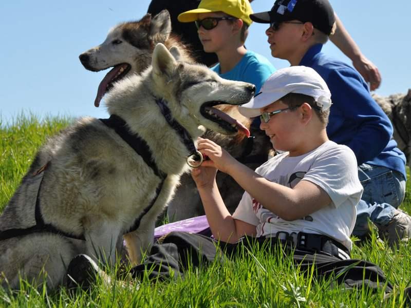 Portrait d'un enfant avec un chien en canirando