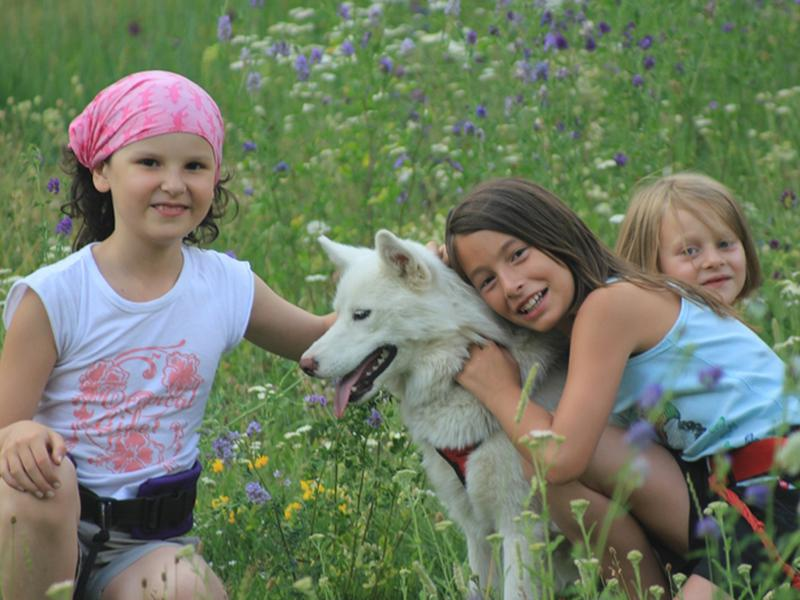 Portrait de trois fillettes avec un chien dans l'herbe