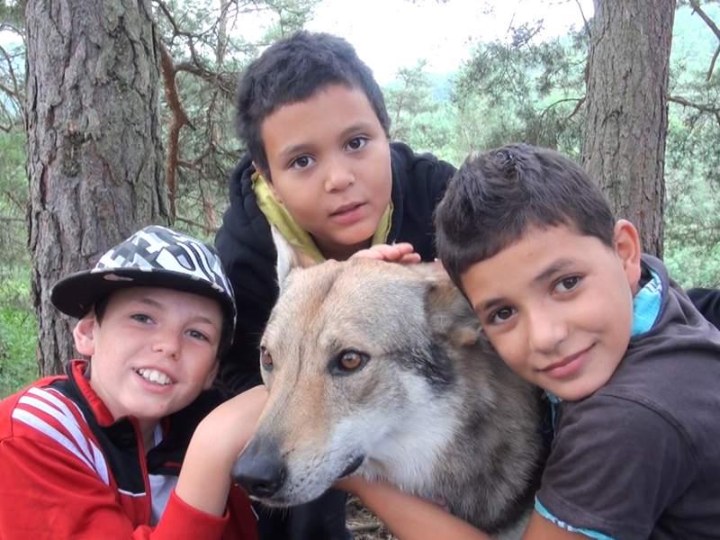 Portrait d'enfants avec un chien en canirando