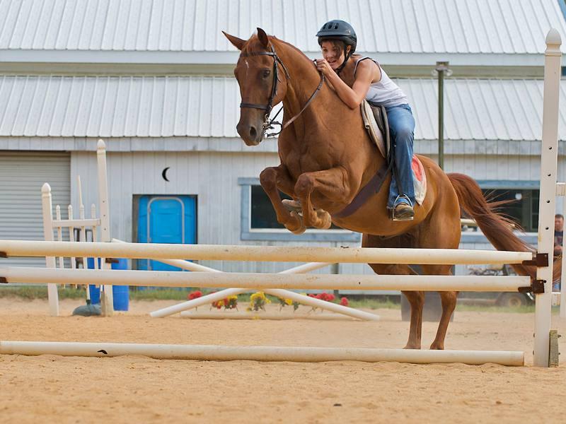 Enfant pratiquant le saut d'obstacle avec son cheval en colo