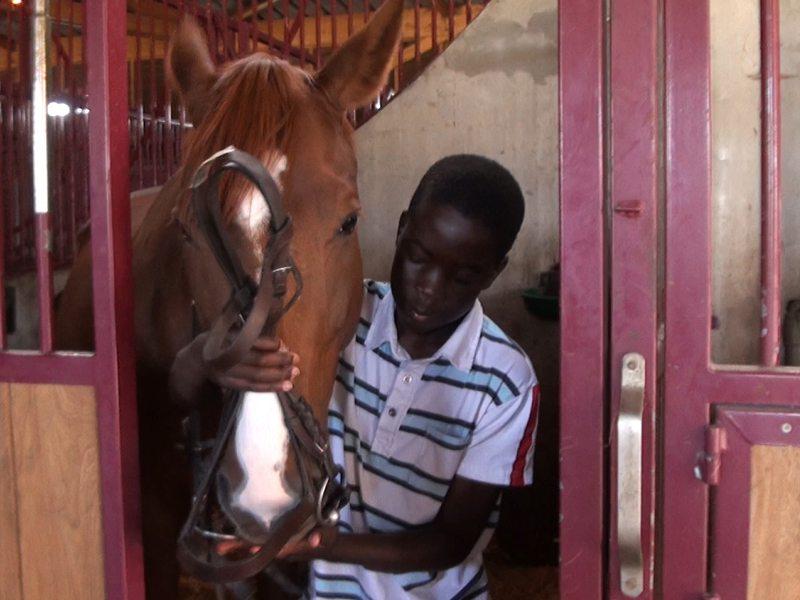 Jeune garçon sortant son cheval du box