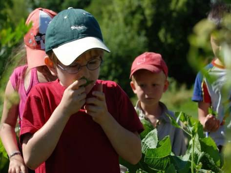 classe découverte nature