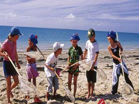 classe de découverte milieu marin